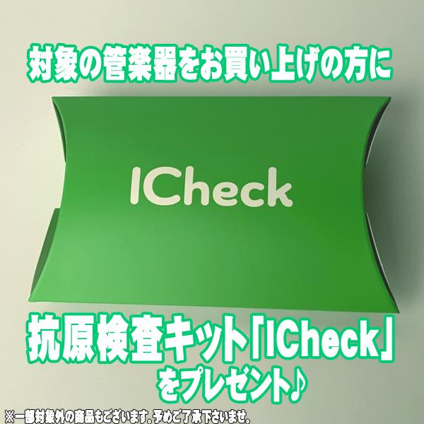 ICheckバナー